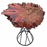 Mesa lateral tronco